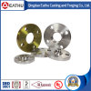 Forged Steel Flanges, En 1092-1 Pn10 Flanges