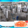 Gummy Candy Production Line (JUNYU)