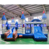 Cartoon Inflatable Bouncers
