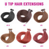 Top Quality Wholesale U Tip Human Hair Extensions