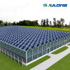 Modern Agriculture Intelligent Venlo Glass Greenhouse for Hydroponic Tomato Strawberry Farming
