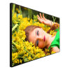 Wall Hanging WiFi 3G Full HD Made of LG Samsung Panel LCD Digital Signage