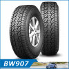 Joyroad Brand Car Tires Ht at Mt UHP 4X4 SUV (235/55ZR18, 255/55ZR18, 255/60R18, 245/35ZR20)