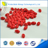 Lycopene Capsule for Food Supplement