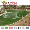 High Function Football Artificial Grass (G-5004)