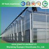 Hot Sale Complete Hydroponics Plastic Film Greenhouse on Sale
