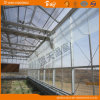 China Supplier Glass Greenhouse with PC Board Covered
