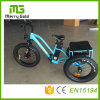 48V 500W E-Tricycles Electric Tricycle for The Elderly Adult E-Trikes Made in China