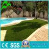 Indoor & Outdoor Sports Royal Artificial Lawn for Garden