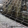 Hot Dipped Galvanized Gabion Cage Net