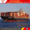 Shenzhen Guangzhou to Mersin Turkey Container Cargo Shipping agent service