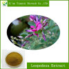 Factory Supply Hot Sell Lespedeza Extract for Anticancer