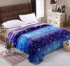 Super Soft Printed Flannel Blanket Sr-B170305-3 Printed Coral Fleece Blanket