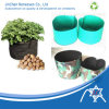 Non Woven Seedling Bags, Root Control Bags