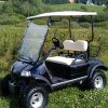 2 Seater Golf Buggy Hunting Buggy with Rear Basket