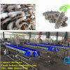 Shrimp Weight Sorter Machine, Seafood Weight Grader, Weighing Classifier