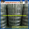 Grassland Fixed Knot Fence /Cattle Fence/Knot Wire Fence