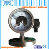 Diaphragm Electric Contact Pressure Gauge