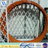 Concertina Coil Barbed Wire for Guard Fence (XA-RBW7)