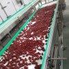 Automatic Biscuit Making Machine Plastic Modular Belt Conveyor System PVC Belt Conveyor System Small Biscuit Machine Production Line Food Conveyor