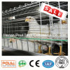 Broiler Meat Chicken Cage Equipment