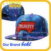 Embroidery Cotton Custom Baseball Trukfit Snapback Hat (FC058SSJ)