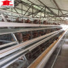 Chicken Egg Poultry Farm Wholesale Bird Cages Automatic Chicken Layer Cage for Philippines