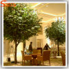China Wholesale Evergreen Artificial Banyan Ficus Tree