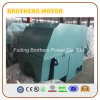 6000V Three Phase AC Electric Motor 400 Motor