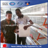 a Type Automatic Chicken Cage System for Nigerian Poultry Farm