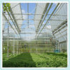 Growing Tent System Green Houses for Agriculture