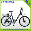 Specialized Mountain Electric Bicycle Bike China