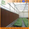 Honeycomb Evaporative Greenhouse Cooling Pad Paper