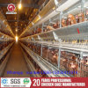 Silver Star Chicken Layer for Poultry Farm