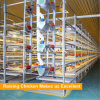 China made H Type Automatic Broiler Cage Design for broiler chicken farm