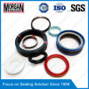 PTFE/FKM/PU/ NBR/POM/PA Material Hydraulic Cylinder Seal
