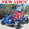 Electric 125cc Racing Go Carts Sale