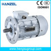 Ye2/Ie2 30kw Three Phase Asynchronous Squirrel Cage Cast Iron Induction Electric Motor