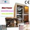 Blast Freezer for Meat and Ice Cream