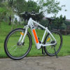 Hidden Battery MTB E Bike (RSEB-304)