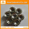 "Anti Rust Golden Supplier Grade 304 1/4""~5/8"" Kep Nut"