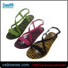 High Quality Flat Many Colors Sandals for Womens