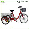 36V 250W 3 Wheel Cargo Electric Motorcycle for Adults