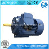 Three Phase High Efficiency Rare Earth Permanent Magnet Synchronous Motor
