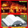 Fastup Good Quality Polygon Roof Marquee Tent in Nz New Zealand Auckland