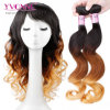 Yvonne Peruvian Human Virgin Ombre Hair Loose Wave