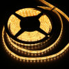 5m 300LEDs SMD5730 LED Strip Lights with Warm/Natural/Cool White/RGB Color for Distributors