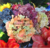 Artificial Hydrangeas Nz Canada Wedding Bouquet Silk Faux Artificial Hydrangea Centerpiece Wedding Artificial Flower