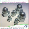 Hex Cap Nuts, Hexagon Domed Cap Nuts/Wholesales Stainless Steel Hexagon Domed Cap Nut