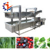 Industrial Air Bubbles Fruit and Vegetable Cleaning Machine